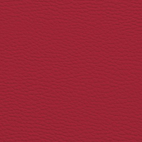 karmino raudonos EK6