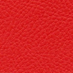 skaisčiai raudona IN80