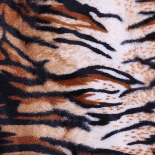 audinys Tiger
