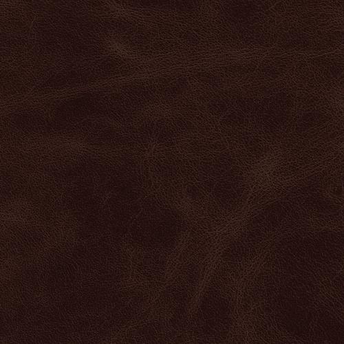 tamsiai ruda LA2004