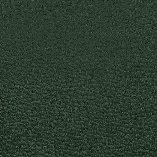 tamsiai žalia D56
