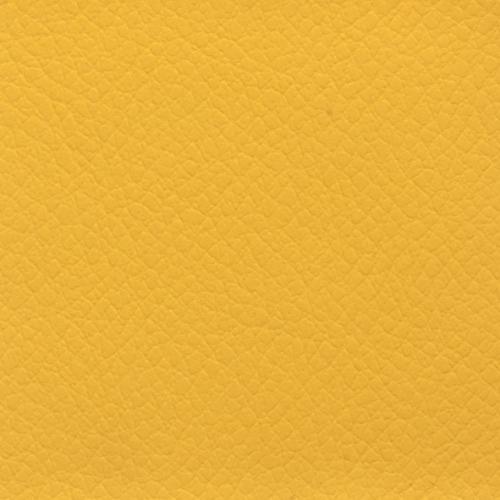 garstyčių geltona KPAB33