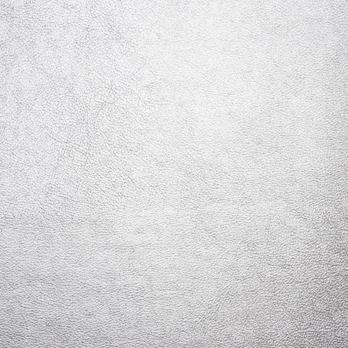 Kunstleder mit Prägung KBSG silber glänzend