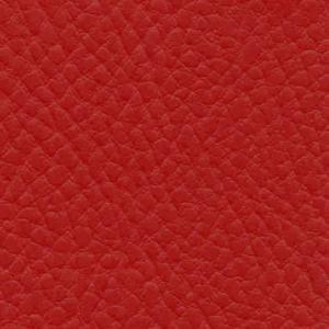 rubino raudona IN17