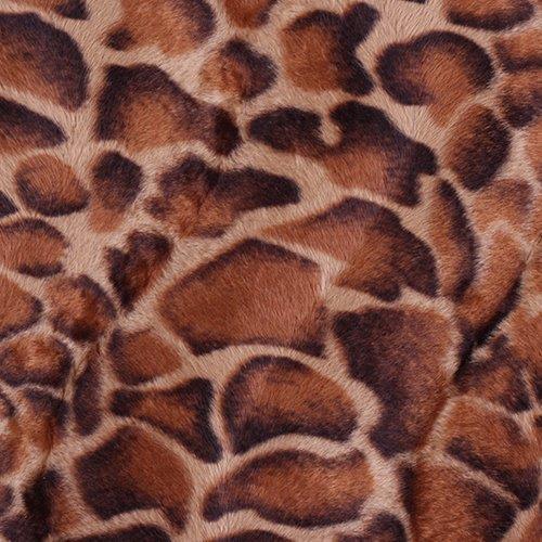 audinys Leopard
