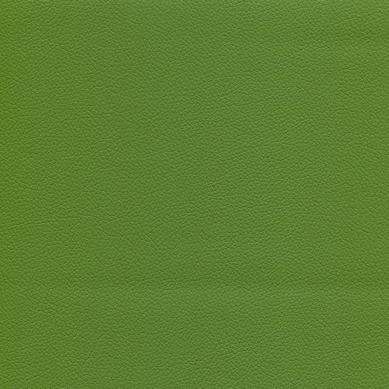 Kunstleder mit Prägung (PU) KOM15701 grün