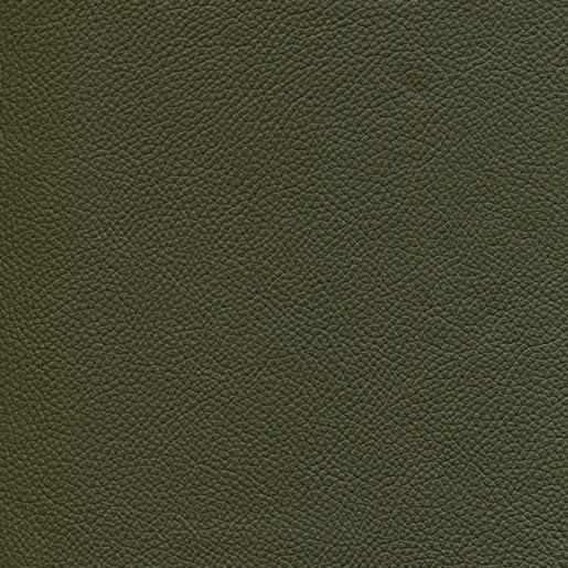 Echtleder LE moosgrün