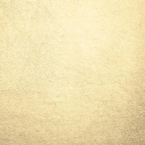 Kunstleder mit Prägung KBGG gold glänzend