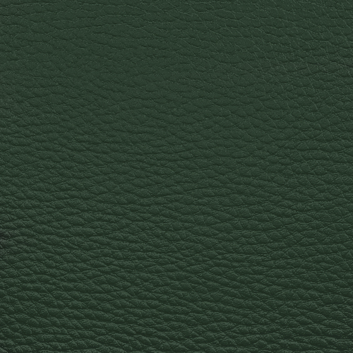 tamsiai žalia KB42